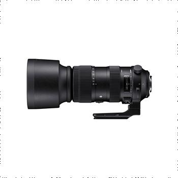 全新机适马 60-600mm f/4.5-6.3 DG OS HSM(S)(尼康卡口)
