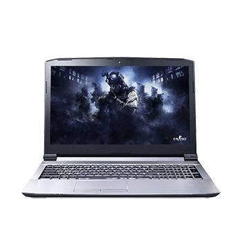 雷神 911-ME银魂/银翼 系列 Intel 酷睿 i7 9代 16GB-18GB NVIDIA GeForce GTX 1650