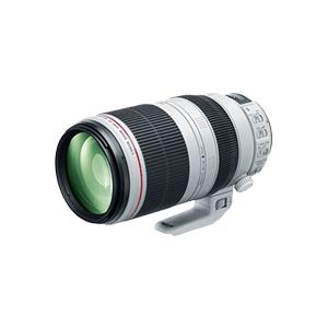 佳能EF 100-400mm f/4.5-5.6L IS II USM 不分版本